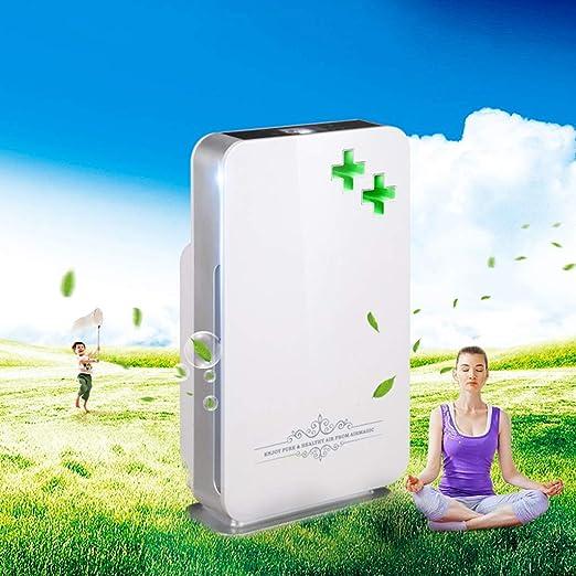 BJYXSZD Filtro de Aire Does, Filtro purificador de Aire Inicio ...