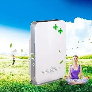 BJYXSZD Filtro de Aire Does, Filtro purificador de Aire Inicio Carbón Activo Filtros de Carbono del Filtro de Aire del sueño con el Modo Anti-alérgenos, Reduce los olores y Gases,Silver: Amazon.es: Hogar