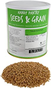 Organic Triticale Seeds- 5 Lbs- Triticale Grain Seed: Sprouting Sprouts, Cooking, Grind Flour, Food Storage & More