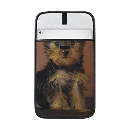 Amazon Com Animal Dog Yorkshire Terrier Yellow Black Mix Pet Small