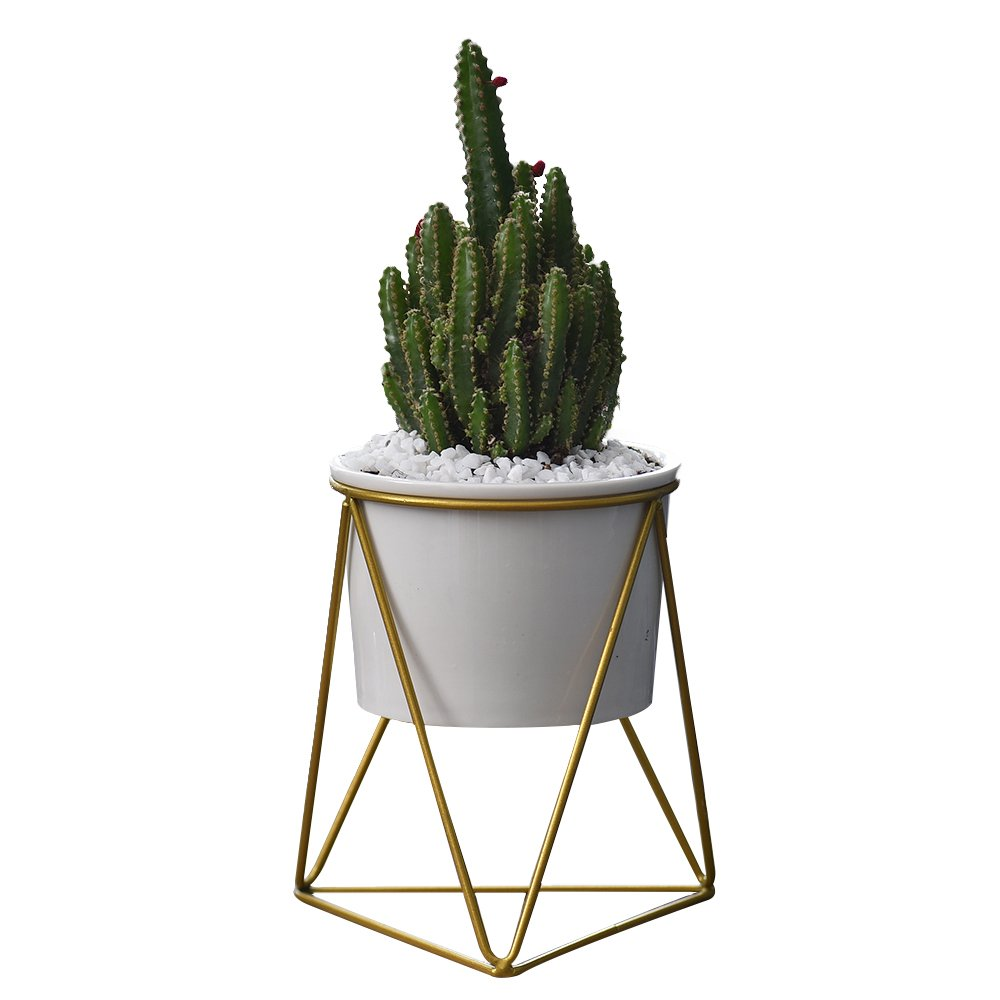 Planter Pots Indoor,6 inch Modern Plants and Planters Garden White Ceramic Round Bowl with Metal Stand for Succulent Planter Cactus (White + Gold)