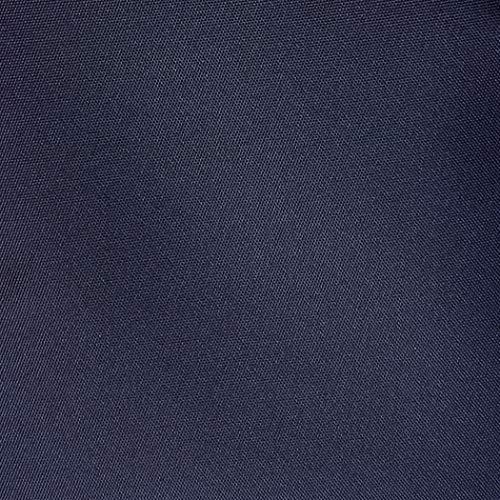 AmazonBasics Underseat Luggage, Navy Blue
