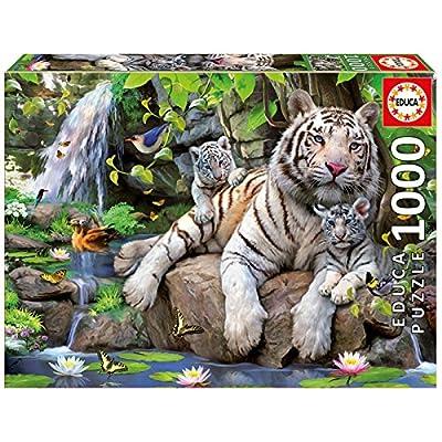 Educa Puzzle Colore Vario 841266814808