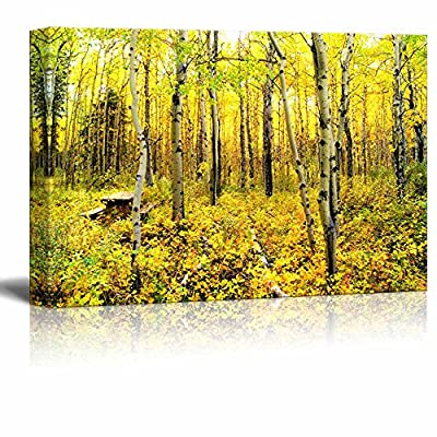 Yellow Trees Vibrant Colors of an Alpine Aspen Forest in The Canadian Rockies in Autumn Wood Framed - Canvas Art Wall Art - 24