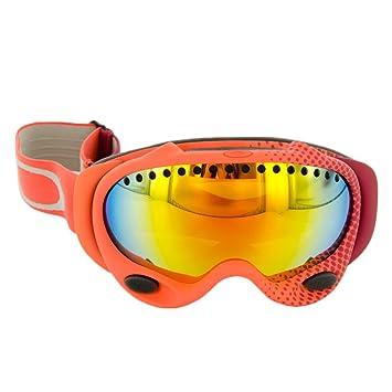 oakley schneebrille
