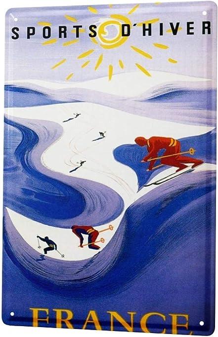 LEotiE SINCE 2004 Plaque en M/étal M/étallique Poster Mural tin Sign Ale Divertissement Ski France