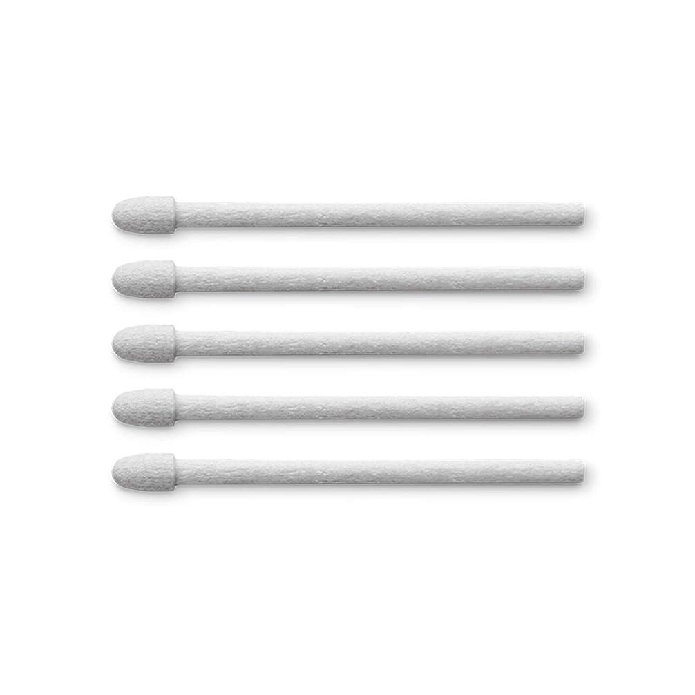 代わりにかける破産aibow タッチペン スマートフォン タブレット スタイラスペン iPad iPhone Android 2本+ペン先6個 (ブラック)