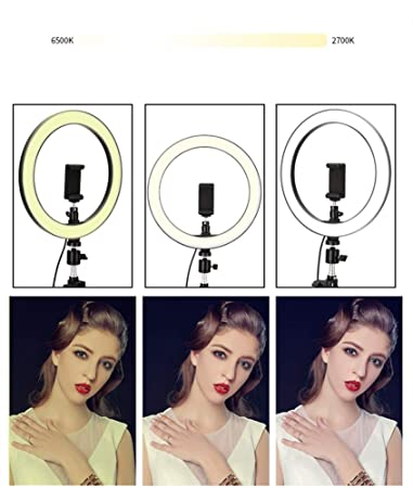 Stand Not Included ,6.3 6.3//10-inch Outer Dimmable Ring Light Kit Rotatable Phone Holder USB Powered for Selfie Portrait YouTube Video Shooting