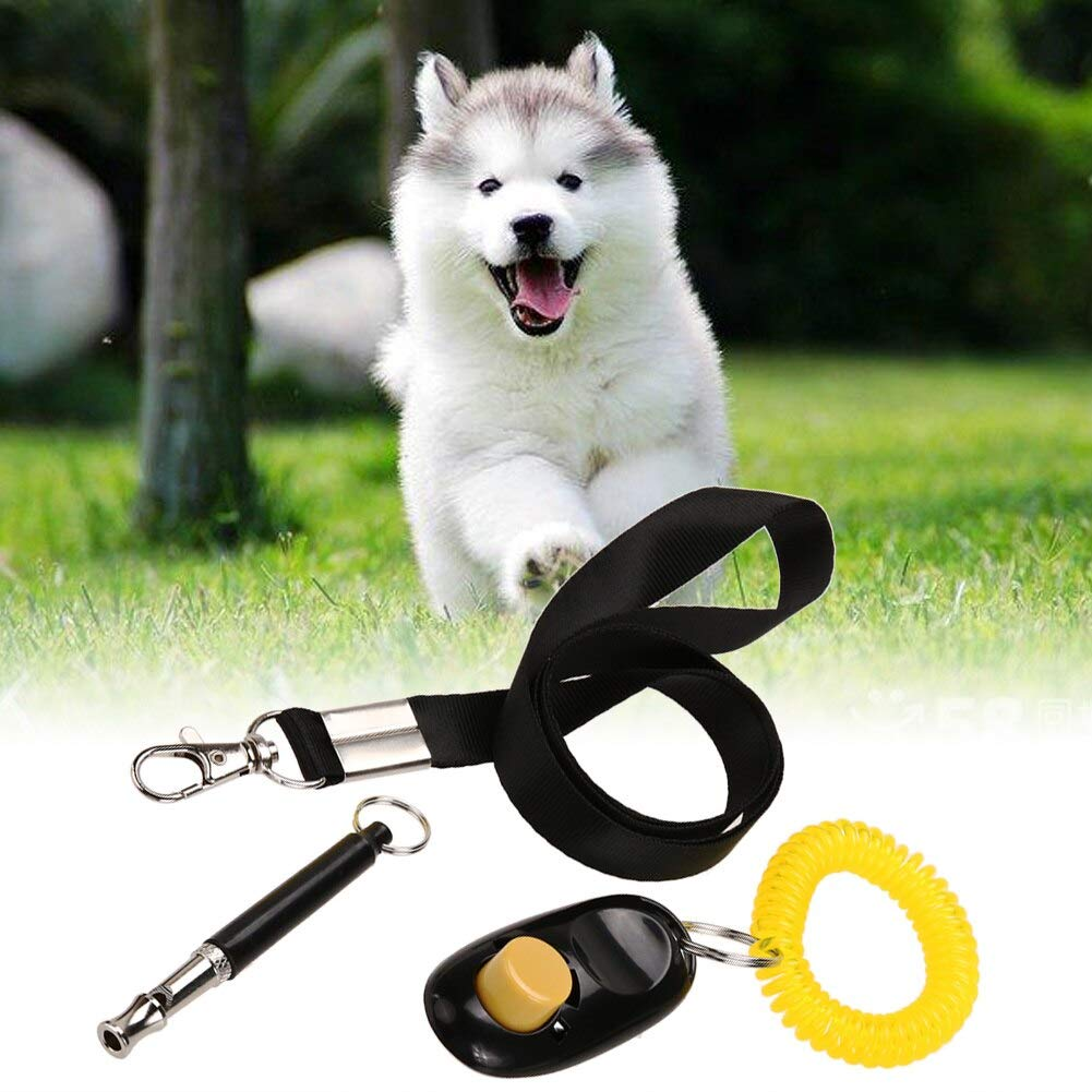 BOZLIZ - Set Thomas - 3 In 1 Dog Training Whistle Adjustable Pet Clicker Free Lanyard Set - Training Treat Puppies Puppy Supplies Loud Clicker Bird Clickers Birds Cats Parrots Whistle Bul by BOZLIZ