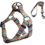 QQPETS Dog Harness and Leash Set Adjustable Back Clip No Pull Quick Fit/Release Halter Harness with Heavy Duty Leash 5FT…