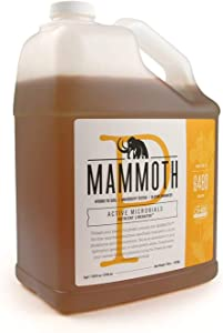 Mammoth P Organic Fertilizer Microbial Inoculants 16% Increase in Yield Maximize Phosphorous and Enhance Plant Health Nutrient Supplement Proven to Grow Bigger Yields - 1 Gallon/4 Liter