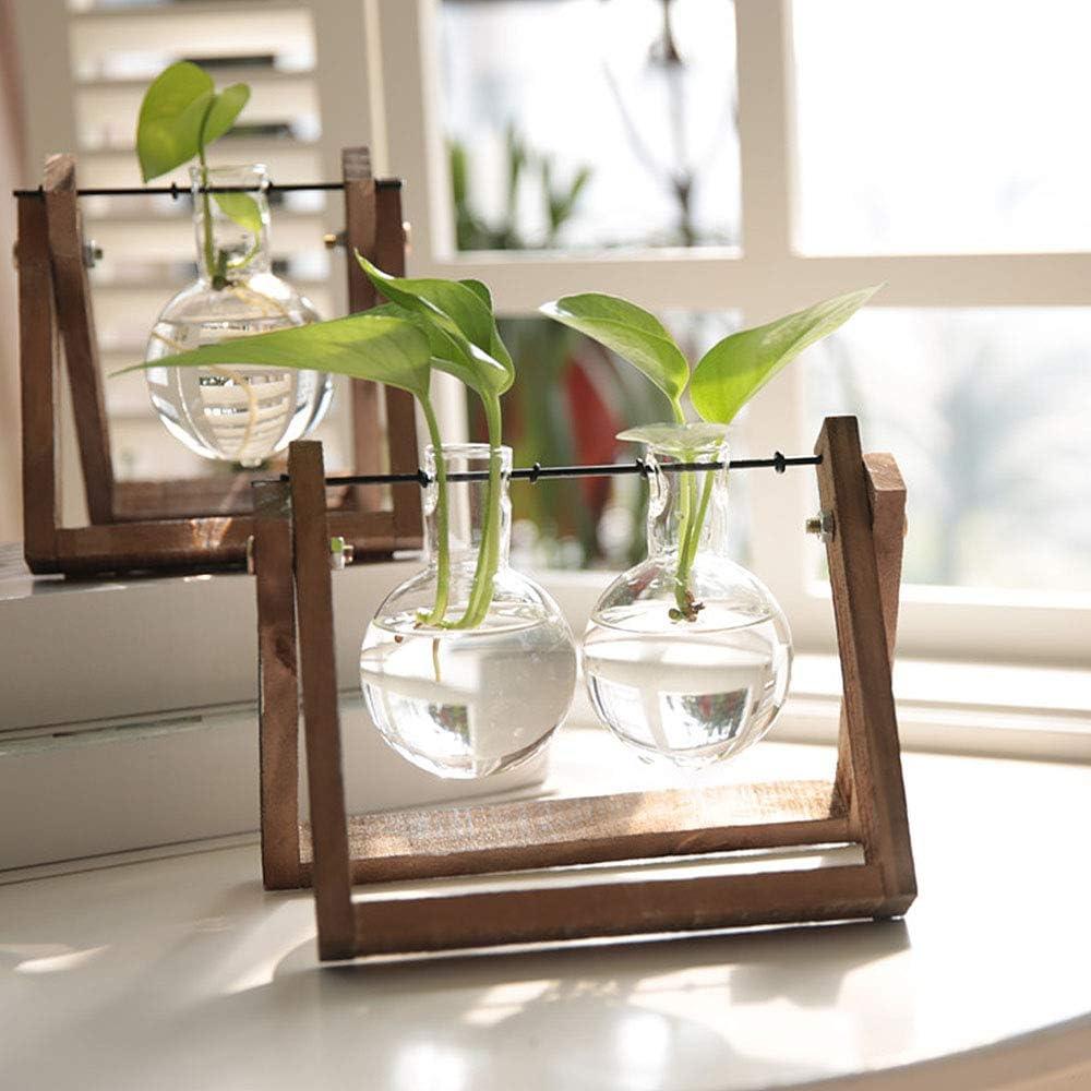 Pannow Vase /à bulbe hydroponique avec Support en Bois Vintage pour Plantes hydroponiques de Bureau en Verre pour d/écoration de la Maison