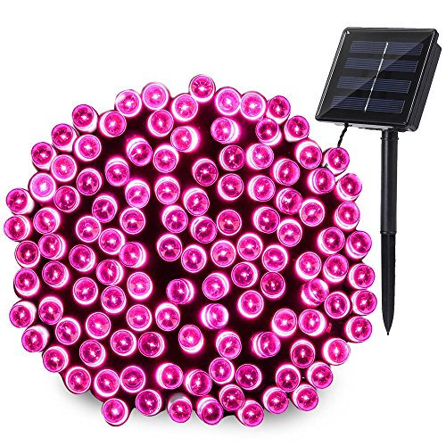 Pink Led Holiday Lights