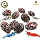 SunGrow 30 Naturally Grown, Pesticide-Free Alder Cones for Shrimps - Lowers pH level, Fight Bacteria and Prevent Fungal Infections in Aquatic Environment - Perfect for both big & small Aquariums