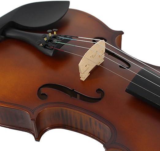 Esound 4/4 MP0013 Rayas de Tigre Violín de Estudiante de Madera Maciza con Estuche Rígido, Reposacabezas, Arco, Colofonia y Extra Cuerdas (Tamaño Completo): Amazon.es: Instrumentos musicales