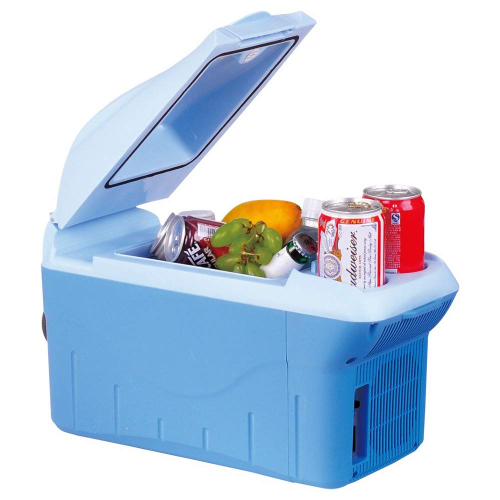 DLDL Portable Cool Cool Box 8L Mini Table Top Mini Congelador Auto ...
