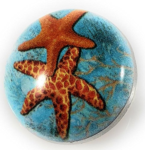 Snap Charm Starfish Sand Dollar Painted Enamel Button 20mm 3/4