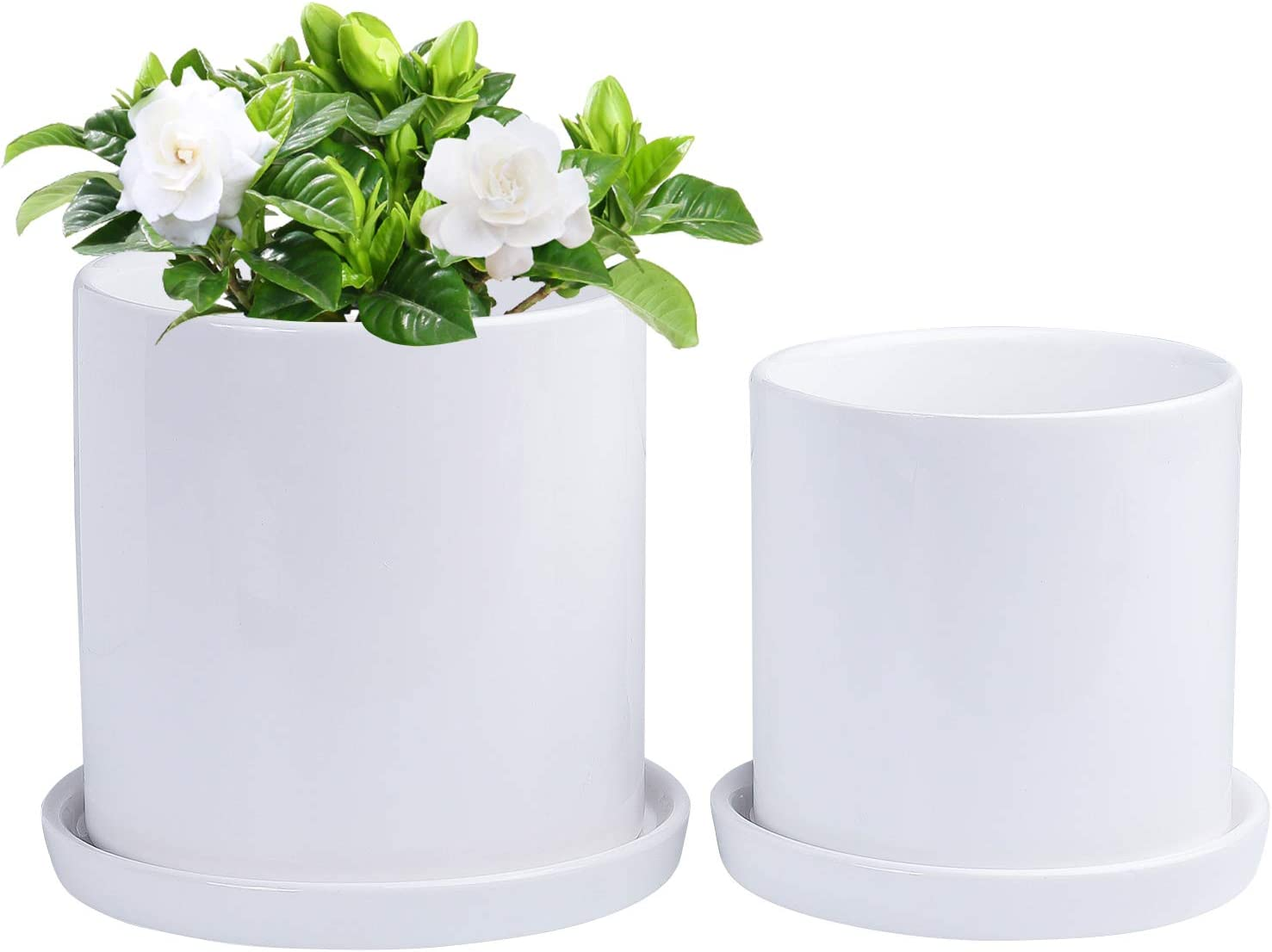 Amazon Com Yingerhuan Plant Pots 5 1 4 3 Inch Cylinder Ceramic Planters With Connected Saucer Modern Decorative Gardening Containers For Succulents Flowers Herbs Cactus House And Office Décor White Kitchen Dining