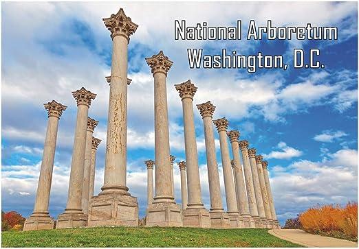 Amazon Com United States National Arboretum Capitol Columns