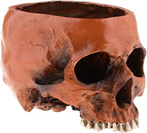 Resin Human Skull Planter Flower Pots Home Office Garden Decoration