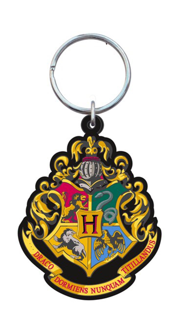 HARRY POTTER 48066 Multi-Colored 1