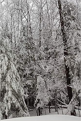Buy 2019 Weekly Planner Winter Season Beautiful 134 Pages