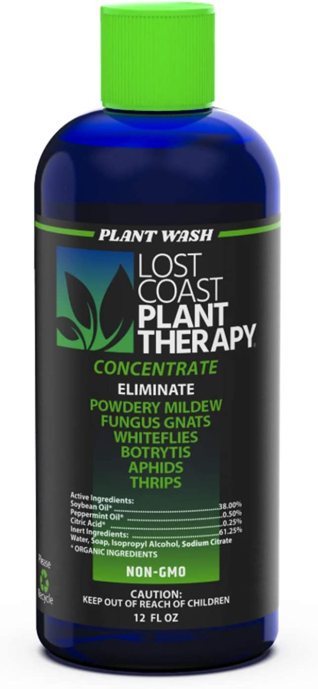 Plant Therapy Lost Coast Organic Fungicide, Insecticide, Miticide Natural Plant Protection Concentrate - 12 oz