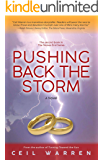 Pushing Back the Storm (The Stones End Series)