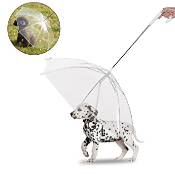 Owude - Paraguas plegable para mascotas con correa y paraguas transparente para perros pequeños, cachorros