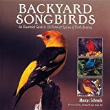 img - for Backyard Songbirds: An Illustrated Guide to 100 Familiar Species of North America book / textbook / text book