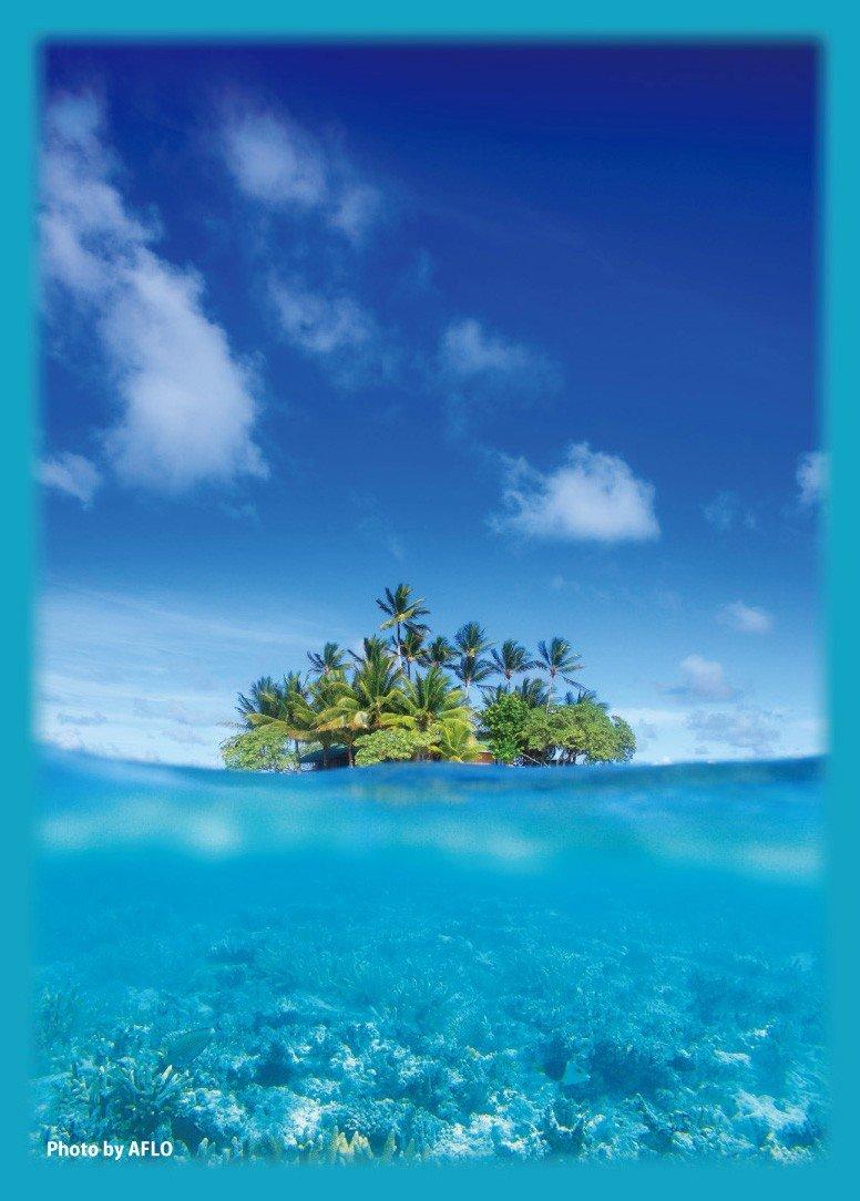 Floating island of Paradise broccoli hybrid sleeve