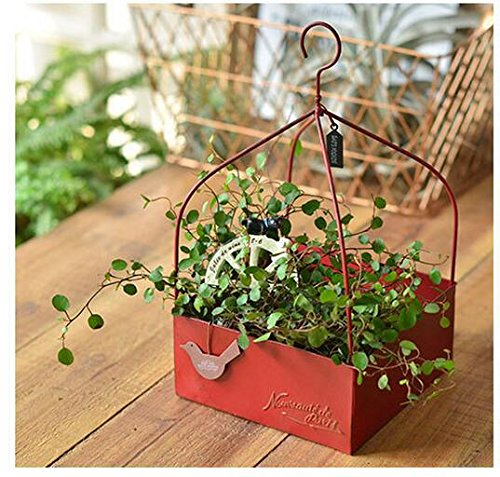 - Best Quality - Flower Pots & Planters - Rustic Hanging Red Iron Square Planter Pot Storage Box with Handle for Herb Succulents - by MANGO. - 1 PCs