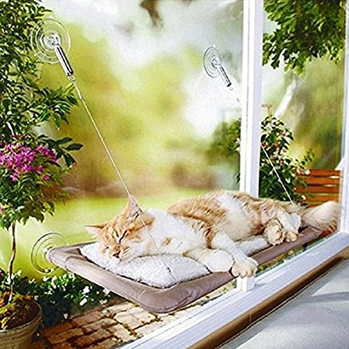 Pet Hammock Window Perches Bed,Sturdy Suction Cup Bed For Pet Cat Enjoy Warm Sun And Great View (Beige)