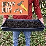 Heavy Duty 1020 Trays No Holes and Humidity Dome