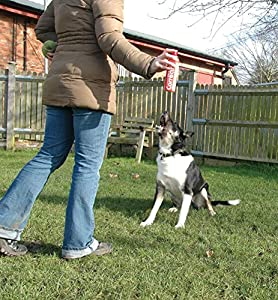 Company of Animals Pet Corrector