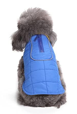 La vogue-invernale animales Chaqueta cálido perro chaleco deportivo Sudaderas Busto 32 cm Azul