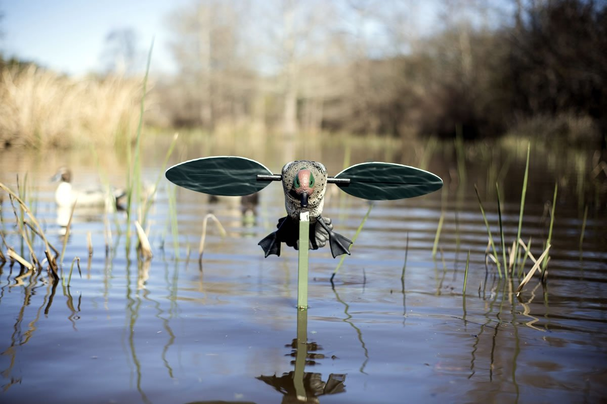 MOJO Outdoors Green Wing Teal Motion Duck Decoy by MOJO Outdoors (Image #6)