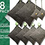 DTXDTech Bamboo Charcoal Bags 8 Pack (2X500 G) (4X220 G) (2X100 G) Activated Bamboo Charcoal Natural Eco Friendly for Home, Car,Closet,Shoes