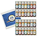 Best Blends Set of Essential Oil - 100% Pure - Popular Blends of Essential Oils