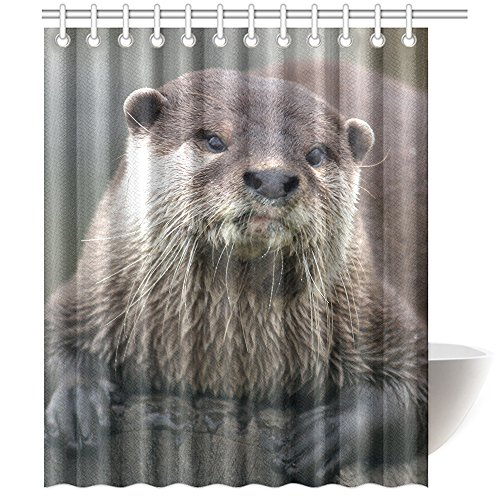 CTIGERS Animal Shower Curtain for Kids Cute Otter on the Wood Polyester Fabric Bathroom Decoration 60 x 72 Inch by CTIGERS