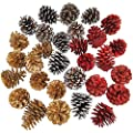 """Supla 30 Pcs Assorted Natural Pinecones Frosted Gold Red Pine Cones Ornaments Dried Real Preserved Pine Cones 2""""-3"""" Tall for Christmas Winter Holiday Table Scatters Vase Bowl Filler Wreath Craft"""