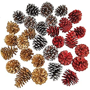"Supla 30 Pcs Assorted Natural Pine Cones Frosted Gold Red Pine Cones Ornaments Dried Real Preserved Pine Cones 2""-3"" Tall for Christmas Winter Holiday Table Scatters Vase Bowl Filler Wreath Craft 42"