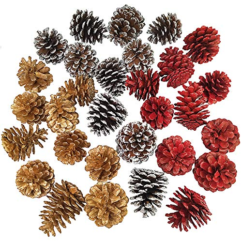 Supla 30 Pcs Assorted Natural Pine Cones Frosted Gold Red Pine Cones Ornaments Dried Real Preserved Pine Cones 2