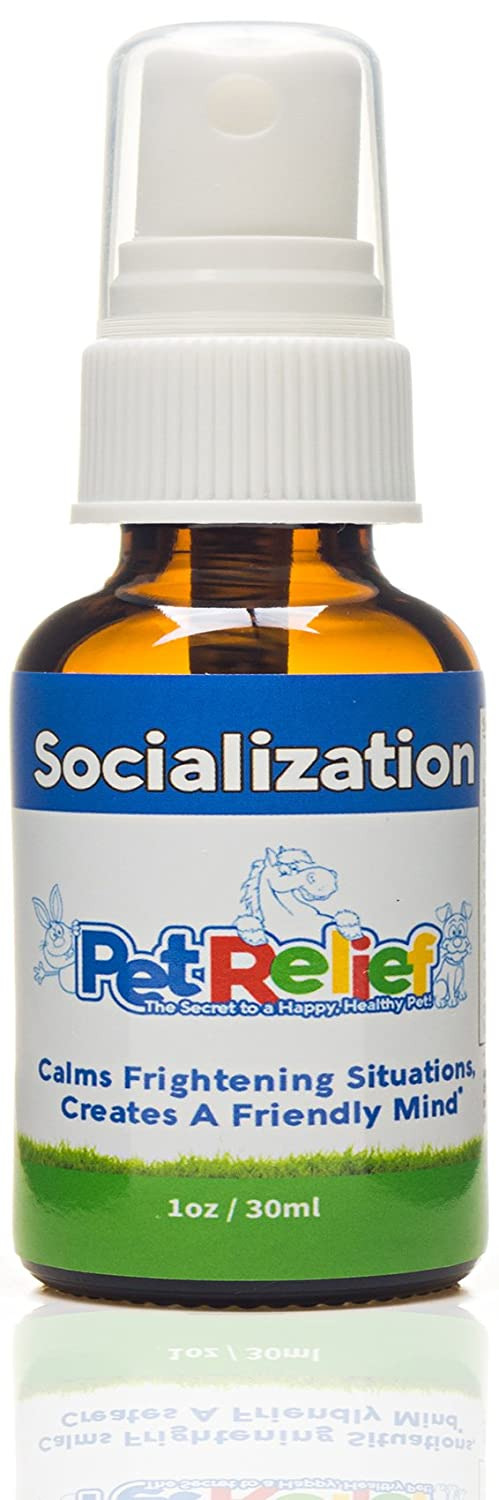 Dog Fear Aggression Relief, Dog Socialization Spray, Natural Pet Corrector, Lifetime Warranty! 30ml Aggressive Dog Training For Fearful Or Aggressive Dogs, No Side Effects! Made In USA By Pet Relief