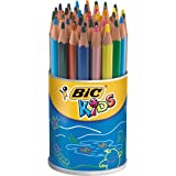 Bic Evolution 829736-ASS Pot de 48 crayons Couleurs Assorties