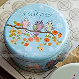 Astra Gourmet 1pc Adorable Owl Cookie Tins Cookie Box, Extra Thick Steel(6.5''x2.7'')