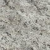 Formica Brand Laminate 093051243512000 Silver Flower Granite Laminate, Silver Flower Granite Artisan