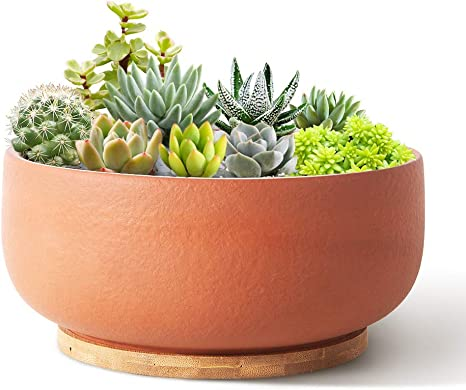 SQOWL Terracotta Planter Pot for Succulent 8 Inch Pottery Pot Round Planter Cactus Clay Flower Pot with Drain Hole and Bamboo Tray Indoor Outdoor