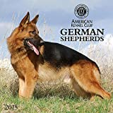 German Shepherds American Kennel Club 2015 Wall Calendar
