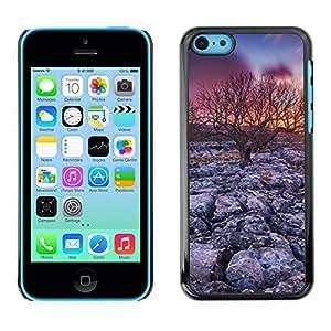 LauStart ( ?rbol de la puesta del sol del desierto ) iPhone 5C Arte & dise?o pl¨¢stico duro Fundas Cover Cubre Hard Case Cover para